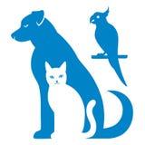 Perro y loro abstractos del gato Fotos de archivo libres de regalías