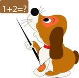 Perro y matemáticas Imagen de archivo libre de regalías