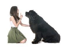Perro y mujer de Terranova fotografía de archivo libre de regalías