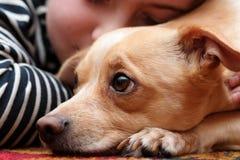 Perro y niño Foto de archivo libre de regalías