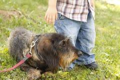 Perro y un niño Fotos de archivo