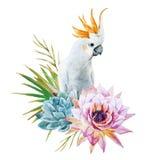 Perroquet d'aquarelle avec des fleurs illustration libre de droits