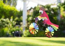 Perroquet de jouet sur une bicyclette photos stock
