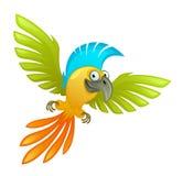 Perroquet drôle Image libre de droits
