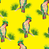Perroquets de cacatoès sans couture de texture Images libres de droits