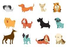 Perros - colección de ejemplos del vector Historietas divertidas, diversas razas del perro, estilo plano stock de ilustración