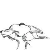 Perros de caza dibujados mano Fotografía de archivo libre de regalías