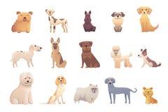 Perros de la colección de diversas razas Perros del vector en el fondo blanco Fotos de archivo