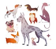 Perros de la historieta de diversos razas y tamaños ilustración del vector