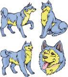 Perros de Laika Fotos de archivo