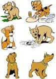 Perros de perrito Imágenes de archivo libres de regalías