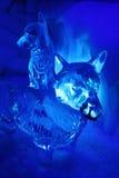 Perros del hielo Imágenes de archivo libres de regalías