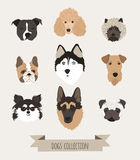 Perros determinados del vector Fotos de archivo