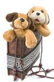 Perros en el bolso foto de archivo libre de regalías