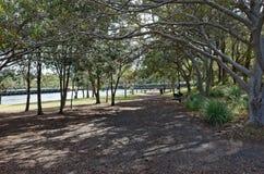 Perros en el parque del punto del lastre en la bahía Sydney de Mort Imágenes de archivo libres de regalías