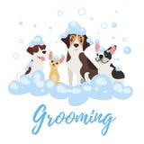Perros en espuma del jabón libre illustration