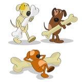 Perros felices divertidos Imagenes de archivo
