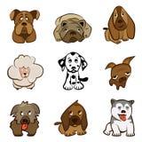 Perros lindos de la historieta Fotografía de archivo libre de regalías