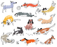 Perros lindos dibujados mano del garabato Ejemplo fijado con los animales domésticos plaing w Foto de archivo