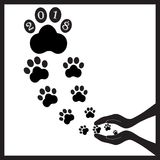 Perros negros de las huellas en manos Imagen de archivo