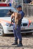 Perros policía en el trabajo Imagen de archivo