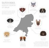 Perros por el país de origen Razas del perro de Holanda del holandés Infograph stock de ilustración