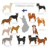 Perros por el pa?s de origen Razas finlandesas del perro Sistema de los perros de los pastores, de la caza, de la reuni?n, del ju libre illustration