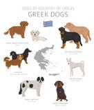 Perros por el pa?s de origen Razas griegas del perro Sistema de los perros de los pastores, de la caza, de la reuni?n, del juguet stock de ilustración