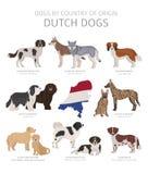 Perros por el pa?s de origen Razas holandesas del perro Sistema de los perros de los pastores, de la caza, de la reuni?n, del jug ilustración del vector