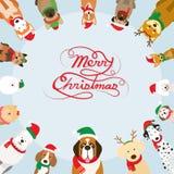 Perros que llevan el traje de la Navidad, marco imágenes de archivo libres de regalías