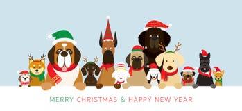 Perros que llevan la bandera de la tenencia del traje de la Navidad imagen de archivo