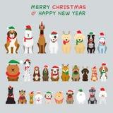 Perros que sientan y que llevan el traje de la Navidad, caracteres fotografía de archivo