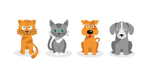 Perros y gatos Fotos de archivo