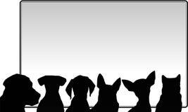 Perros y messageboard Fotografía de archivo libre de regalías