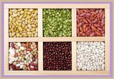 Mix of bean Stock Image