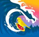 Perruche augmentant sur la vague Perfectionnez pour le décor tel que des affiches, art de mur, sac d'emballage, copie de T-shirt, illustration libre de droits