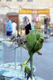 Perruches dans l'animal familier Souq de Doha photographie stock libre de droits