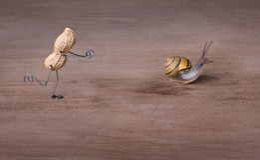 Persecución de caracoles Imagen de archivo libre de regalías
