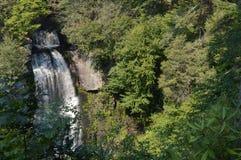 Persecución de las cascadas Foto de archivo libre de regalías