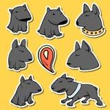 Persegue o pitbull dos caráteres Desenhos animados engraçados dos animais Animais de estimação da etiqueta da garatuja Imagens de Stock Royalty Free