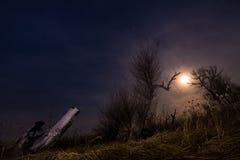Perseguindo a lua - paisagem da Lua cheia da noite Imagens de Stock Royalty Free