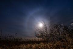 Perseguindo a lua - paisagem da Lua cheia da noite Foto de Stock Royalty Free