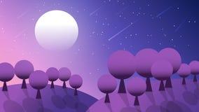 Perseid-Dusche in der Nacht der Landschaft lizenzfreie abbildung