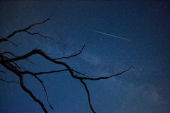 Perseid in August Royalty Free Stock Image