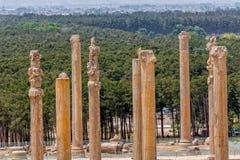 Persepolis ancient pillars Stock Photo