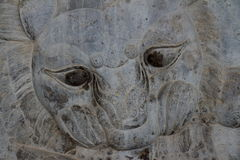 Persepolis: Bull and Lion Fight Stock Images