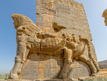 Persepolis Lamassu statues Royalty Free Stock Photography