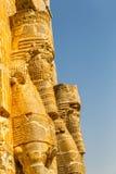 Persepolis Lamassu statyer Arkivbilder