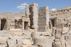 Persepolis nästan Shiraz, Iran, Asien Arkivfoton