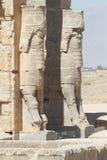 Persepolis nästan Shiraz, Iran, Asien Fotografering för Bildbyråer